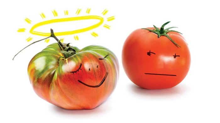 Cele mai bune alimente din lume, recomandate de medicii de la clinica de nutritie Dietalia