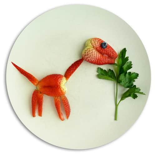 Mancaruri haioase cu animale - capsunaurus