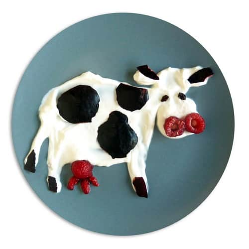 Mancaruri haioase cu animale - vaca