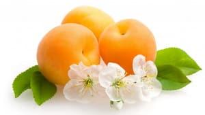 Caisele - fructe cu efect terapeutic