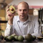 Avocado este bun in leucemia mieloida acuta