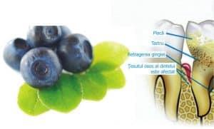 Alimente care elimina tartrul dentar